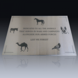 Steel Etched