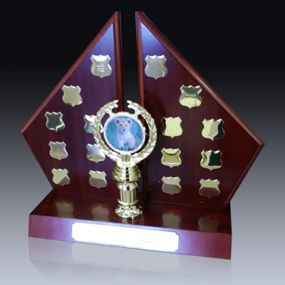 Trophies Product